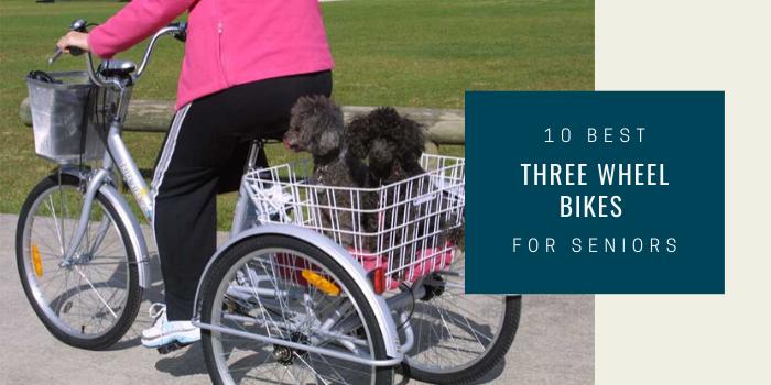 10 Best Three Wheel Bikes For Seniors